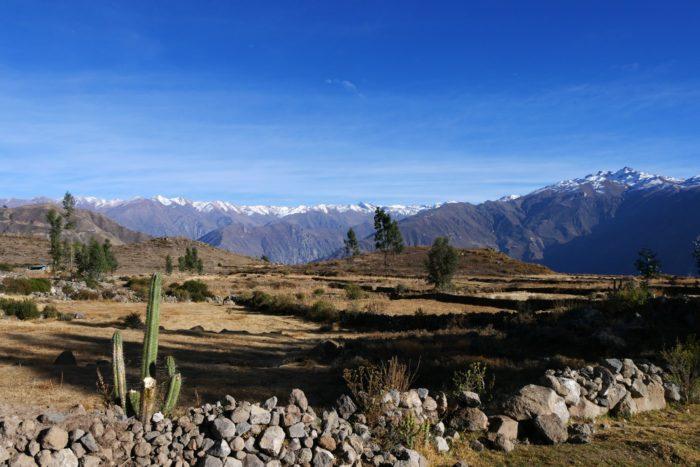 Trek Sud Pérou avec guide - panorama Canyon del Colca